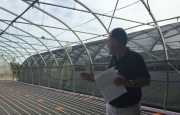 Discussing the Greenhouses
