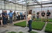 Mary Jane (Sheridan) discusses boxwood propagation