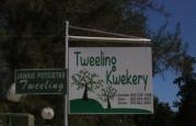 tweelingskwekery