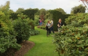Broadfields Garden