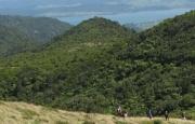 View from Te Raupua trig