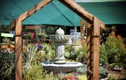 Tzaneen Garden Centre